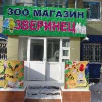 Обслуживание аквариумов, в г.Астана