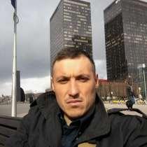 Nicolai, 38 лет, хочет пообщаться, в г.Кёльн