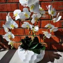 Цветы премиум качества!, в г.Костанай