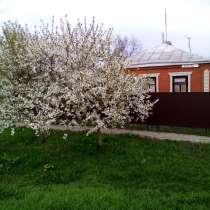 Продаю вместе 2 Дома на одном участке, 2 гаража, огород, в Каневской