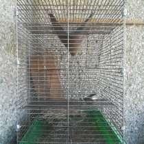 Клетка для грызунов крупного размера, в Нижнем Тагиле