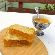Мёд, в Ессентуках