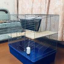 Клетка для грызунов, в г.Харьков