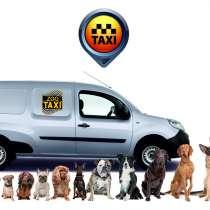Перевозка животных, зоотакси, спец транспорт, в Краснодаре