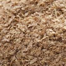 Продаем отруби пшеничные. Отруби пшеничные. Отруби, в Пензе