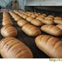 Техническая продукция и услуги для хлебопредприятий, в Москве