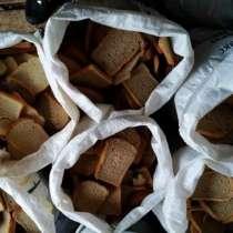 Сухой хлеб (сухари) Корм Животным, в Перми