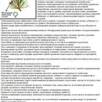 Сосновая пыльца или мужской иммунитет, в Томске