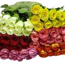 Цветы напрямую из Кении, в Москве