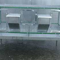 Клетка для кроликов откормочная, в Челябинске