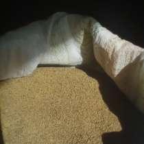 Семена люцерны, в Нижнегорском