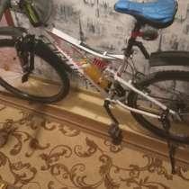 Велосипед, в Ливнах