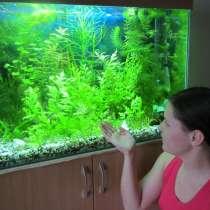 Продам аквариум (170 л, комплект), в Санкт-Петербурге