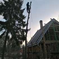 Профессиональная обрезка, снос опасных деревьев и др, в г.Нарва