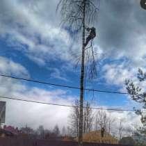 Спил деревьев любой сложности, в Пензе
