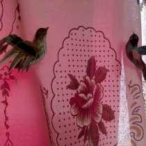 Птички для декора, в Владимире