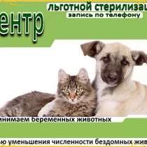 Центр льготной стерилизации, в Иркутске