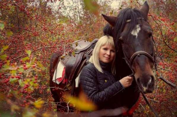 Подарочные карты на все конные услуги в г. Ростове-на-Дону