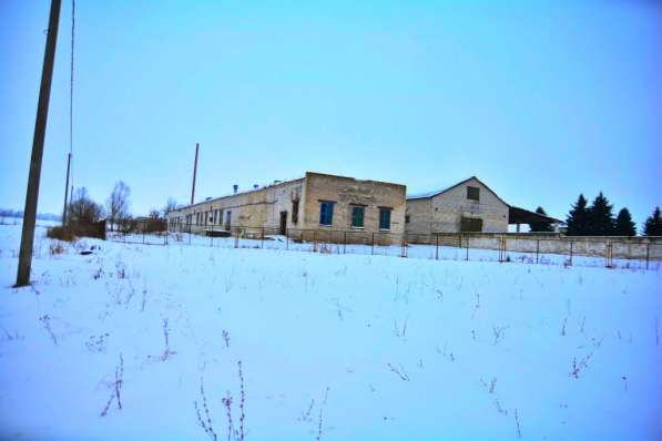 Продам завод по переработке молока,пл.782м2, аг.Старый Сверж в фото 6