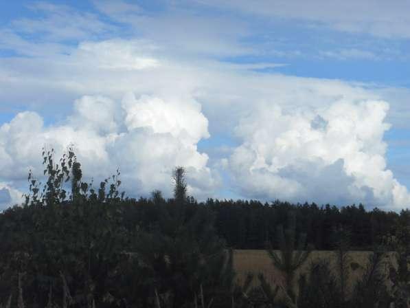 Продам земельный участок 18 соток в Калуге фото 8