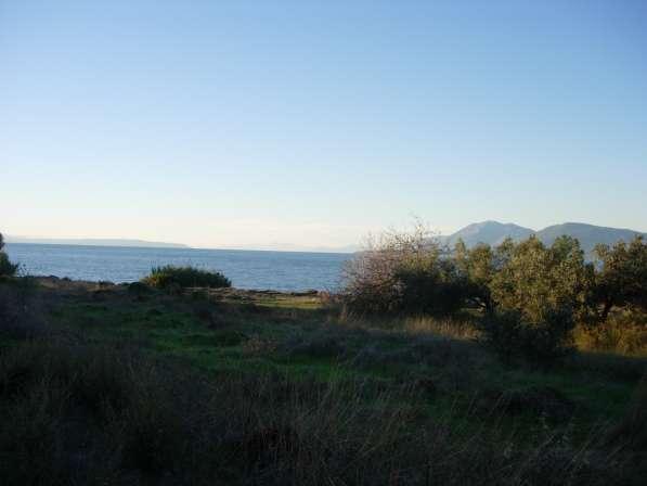 Продаю недвижимость в Греции, участки, дома, квартиры в фото 6