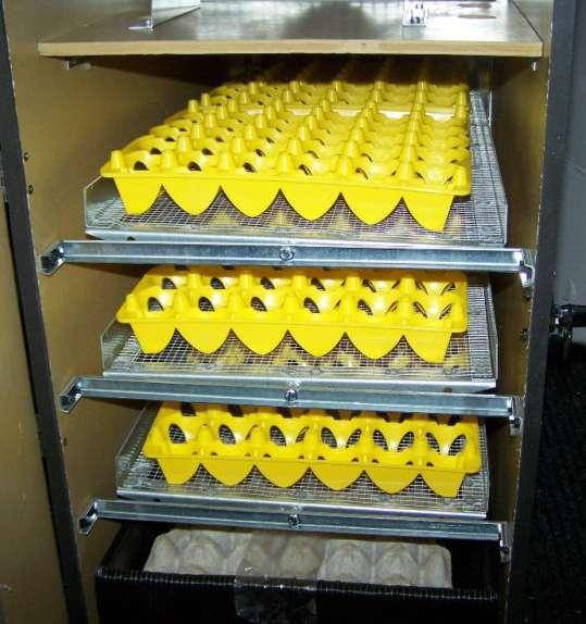 ✔Лотки на 20 гусиных яиц для транспортировки или в инкубатор в Астрахани