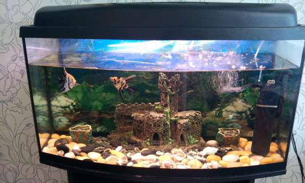 Продам аквариум Aquaei (Польша) 150л