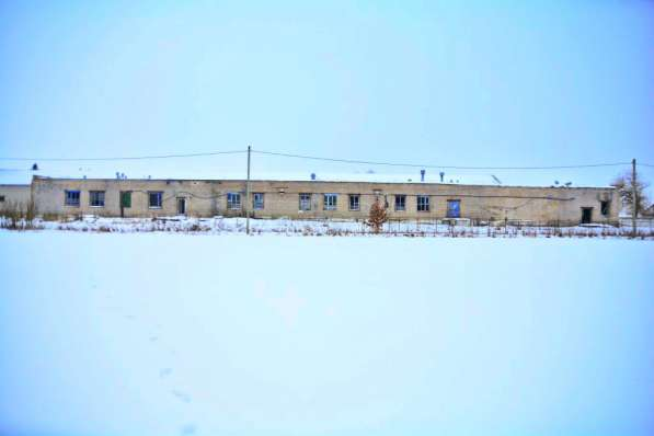 Продам завод по переработке молока,пл.782м2, аг.Старый Сверж в фото 7
