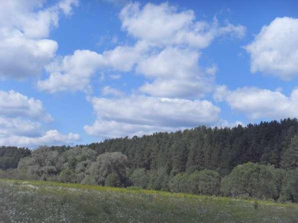 Продам земельный участок 18 соток в Калуге фото 7