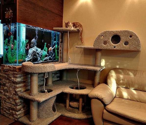 Изготовление комплексов и домиков для кошек на заказ в Ростове-на-Дону фото 20