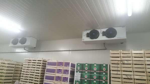 Оборудование с РГС для камер хранения овощей и фруктов