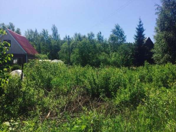"""Продается земельный участок 6 соток в СНТ """"Поиск"""", вблизи дер. Бели, Можайский район, 119 км от МКАД по Минскому шоссе."""