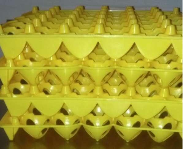 ✔Лотки на 20 гусиных яиц для транспортировки или в инкубатор в Астрахани фото 5