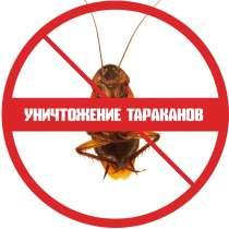Уничтожение тараканов в квартире, в г.Минск