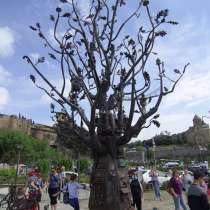 Один тур - два праздника: Тбилисоба и Ртвели, 5 - 8 октября, в Краснодаре