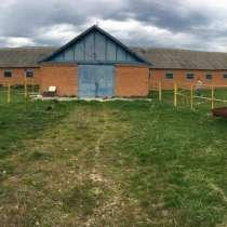 Ферма под коневодство и крупный скот, в Краснодаре