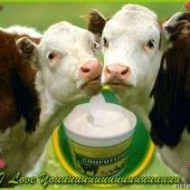 Пробиотическая добавка для лечения и роста телят, коров, в г.Черкесск