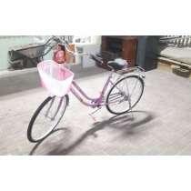 Lady Pink Bicycle, в г.Дубай