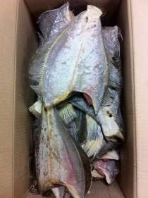 Рыбная продукция Ерш (камбала) вяленый, Мойва вял, Креветка, в Мурманске