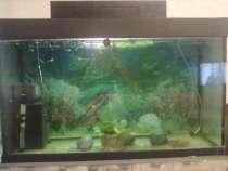 Продам аквариум на 500 литров, в Обнинске