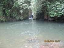 Сдается дача для отдыхающи Мтирала национальный Парк Аджара, в г.Тбилиси