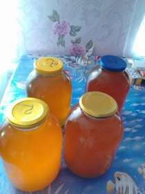 Продаю мед недорого, в г.Шахты