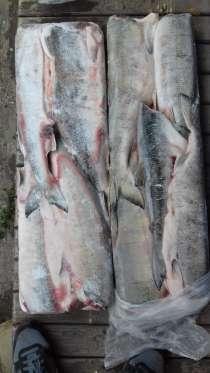 Д-В рыбопродукция, в Краснодаре