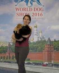 Acirs, 100 лет, хочет найти новых друзей, в Москве