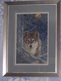 Картина Волк, в Новокузнецке
