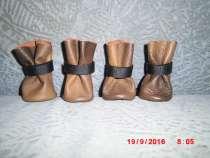 Для маленькой собачки обувь, в г.Добрянка