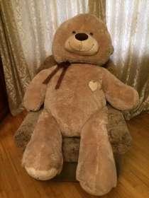 Медведь, в Москве