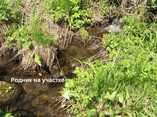 Купить земельный участок в Чемальском районе 6,5 Га в Горно-Алтайске Фото 3