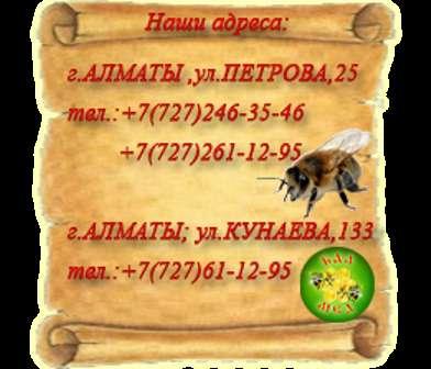 Продам мёд в г. Алматы Фото 1
