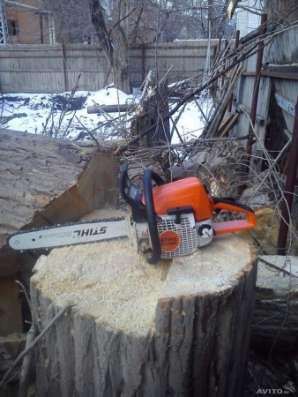 Спилить дерево, деревья
